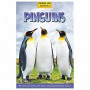 Lobbes Pinguins