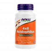 Acidophilus 4x6 120 capsule