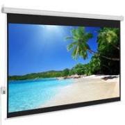 Globalscreen Pantalla Eléctrica Globalscreen Basic de 150'(325x185cm)
