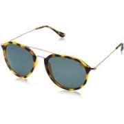 INVU Round Sunglasses(Grey)