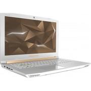 Acer Predator Helios 300 PH315-51-769M Goud, Wit Notebook 39,6 cm (15.6'') 1920 x 1080 Pixels 2,20 GHz Intel® 8ste generatie Core™ i7 i7-8750H