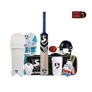 Playking Cricket Kit Bag Including Bat, Helmet, Pads, Batting Gloves, Abdominal Guard, Arm Band, Season Ball (Colour May Vary, 4)