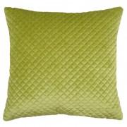 Perna verde catifelata Baryton