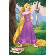 Puzzle Dino - Disney Princess, 24 piese (62890)