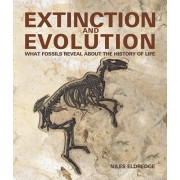 Extinction and Evolution: What Fossils Reveal about the History of Life, Paperback/Niles Eldredge