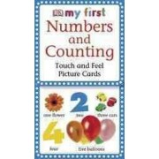 DK Publishing (Dorling Kindersley) My First Touch and Feel Picture Cards: Numbers and Counting