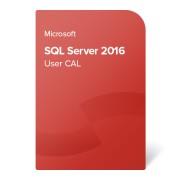 Microsoft SQL Server 2016 User CAL, 359-06322 електронен сертификат