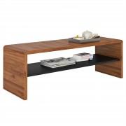 CARO-Möbel TV Lowboard / Couchtisch LEXA in nussbaum/schwarz