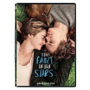The Fault in our Stars:Shailene Woodley,Ansel Elgort - Sub aceeasi stea (DVD)