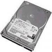 IBM 43X0814 - interne harde schijf - 300 GB