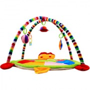 Ole Baby Twist and Fold Musical Activity Play Gym-Newborn PlayMat