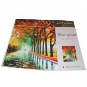 Bloc pentru Desen, Format A3, 15 File, 170 g/m - Caiet pentru Arte Plastice