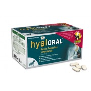 Hyaloral small and medium breed - 90 cp