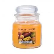 Yankee Candle Mango Peach Salsa vonná svíčka 411 g