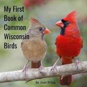 My First Book of Common Wisconsin Birds, Paperback/Jean Krieg