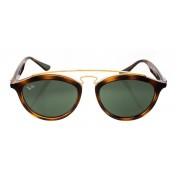 Óculos de Sol Ray-Ban Gatsby RB 4257 Verde e Marrom/Dourado 53