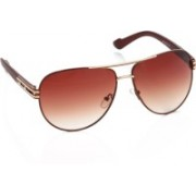 Rockford Aviator Sunglasses(Brown)