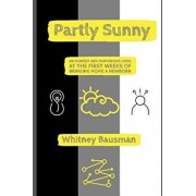 Partly Sunny: An Honest and Humorous Look at the First Weeks of Bringing Home a Newborn, Paperback/Whitney Bausman