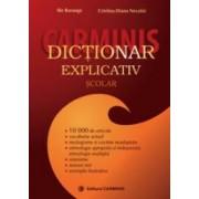 Dictionar explicativ scolar