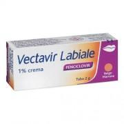 Perrigo Italia Srl Vectavir Labiale*crema 2g 1%