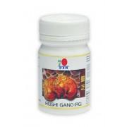 A Reishi Gano (RG) ganoderma kapszula 30 kapszula x 270mg