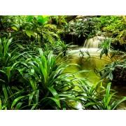 Fototapeta FTXXL 1487 Vodopád v džungli, papierová , 360x255 cm - 4 dielna