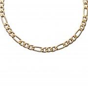 Collar Cornell Ma011 Cien por ciento acero quirurgico 316L, Caballero-Dorado