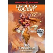 Dungeons & Dragons: Big Trouble: An Endless Quest Book, Paperback/Matt Forbeck