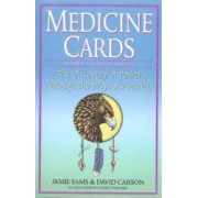 Medicine Cards The Discovery of Power Through the Ways of Animals With Cards