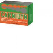 carnidyn 20 buste