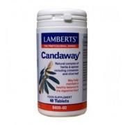 Lamberts Candaway (60tb)