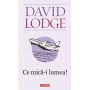 Ce mica-i lumea!/David Lodge
