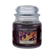 Yankee Candle Autumn Glow 411 g unisex