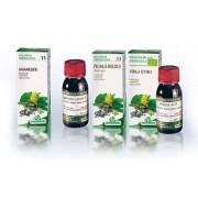 Specchiasol Soluzione Idroalcolica 69 Centella Asiatica