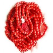 CEYLONMINE- Red Corla Mala For Unisex certified & Original Coral/Moonga 108 Beads Mala