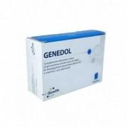 Genetic Genedol 20 Bustine - Integratore per la funzione articolare