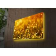 Tablou pe panza iluminat Ledda, 254LED3290, 45 x 70 cm, panza