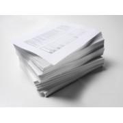 Copiere / Printare A3 alb-negru