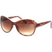 Kenneth Cole Retro Square Sunglasses(Brown)