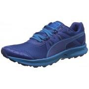 Puma Men's Descendant Tr True Blue and Blue Danube Running Shoes - 9 UK/India (43 EU)
