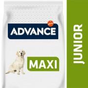 14kg Maxi Junior pollo Advance pienso para perros