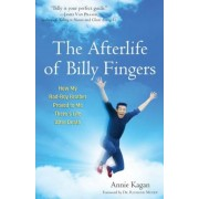 The Afterlife of Billy Fingers: How My Bad-Boy Brother Proved to Me There's Life After Death, Paperback