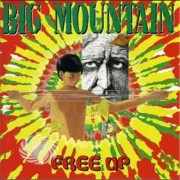 Video Delta BIG MOUNTAIN - FREE UP - CD
