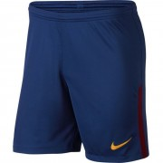 Pantaloni scurti barbati Nike FC Barcelona Stadium 847257-455