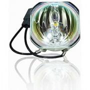 Projector Bare Lamp Bulb for EPSON ELPLP95 / V13H010L95 EB-2055 EB-2155 EB-2155W EB-2165W EB-2245U EB-2250 EB-2250U EB-2
