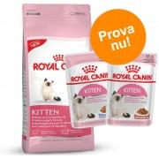 Royal Canin Blandat provpack: Royal Canin Kitten + 24 x 85 g vtfoder - Mother and Babycat (2 kg + 24 x 85 g vtfoder)