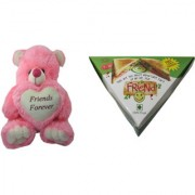 Teddy Bear Soft Toy Friend for Friends Pizza for Sister