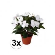 Bellatio flowers & plants 3x stuks Kunstplanten witte Vlijtig Liesje heester van 25 cm Wit