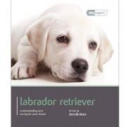 Dog Expert Labrador Dog Expert Book