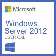 Microsoft Windows Server 2012 User Cal 20 Utilisateurs